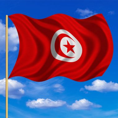 Visite guidée Tunisie